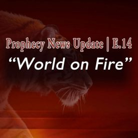 Deep orange field with semi-transparent tiger salking with words: Prophecy News Up date | E.14