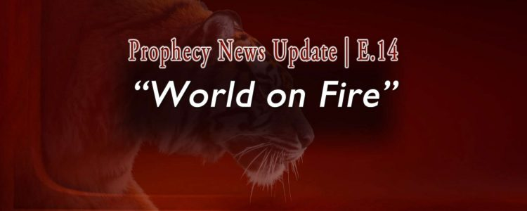 "Deep orange field with semi-transparent tiger salking with words: Prophecy News Up date | E.14 ""World on Fire"""